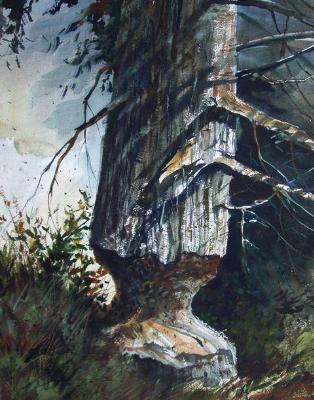 """Beaver Tree"""