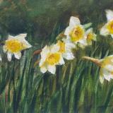 """Dancing Daffodils""  Sold"