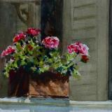"""Back Porch Geraniums"" Sold"